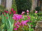 rennie_garden_045